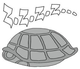 Grey Turtle messages sticker-1