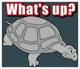 Grey Turtle messages sticker-2