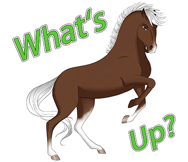 Horsemoji. Stickers by Design111 messages sticker-1