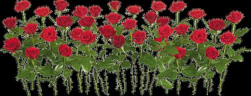 День победы - Советские открытки и цветы на 9 мая messages sticker-5
