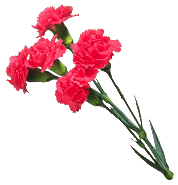 День победы - Советские открытки и цветы на 9 мая messages sticker-9
