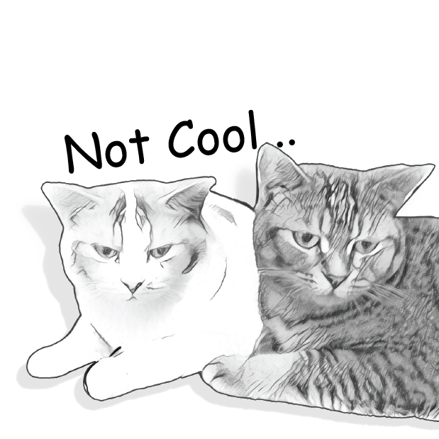 Gorma the Cat messages sticker-10