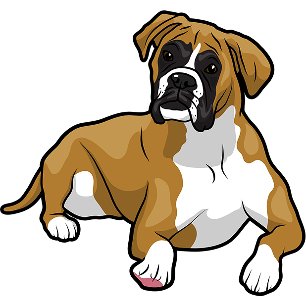 BoxerMoji - Boxer Emoji & Sticker messages sticker-7