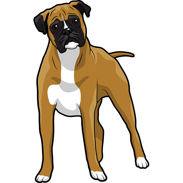 BoxerMoji - Boxer Emoji & Sticker messages sticker-5