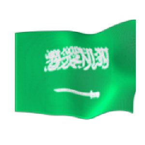 National Flags Animated messages sticker-8