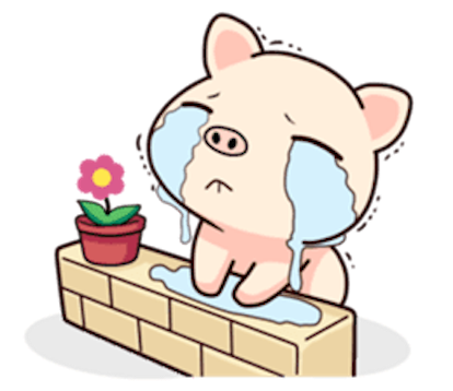 Pig and Cat Lovely Friend messages sticker-1