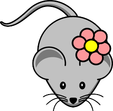 Rat Sticker - Collection Of Stickers messages sticker-11