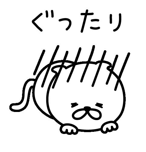 Pretty kitten sticker 3 messages sticker-11