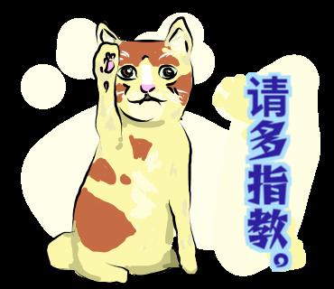 有点怪猫 messages sticker-3