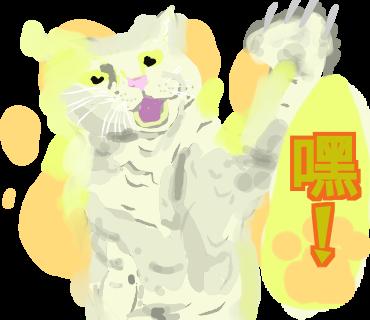 有点怪猫 messages sticker-4