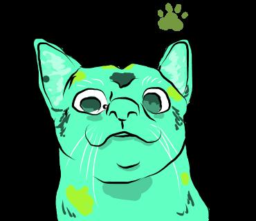 有点怪猫 messages sticker-1