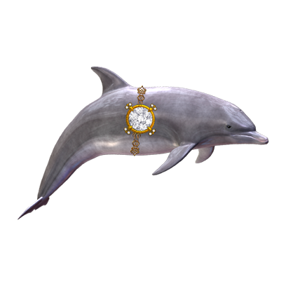 Where's the Dolphin Sticker Pack for iMessage messages sticker-5