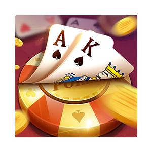 Texas Holdem-Offline Poker Casino Games messages sticker-0