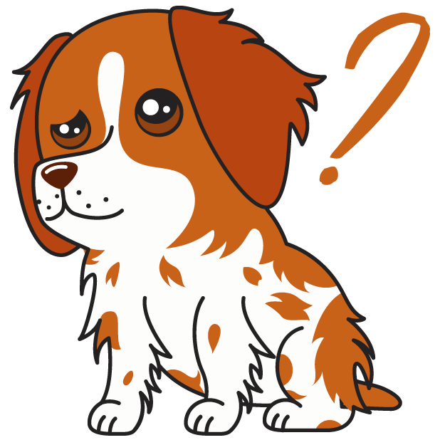 Honey the Brittany Spaniel messages sticker-8