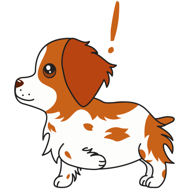 Honey the Brittany Spaniel messages sticker-9