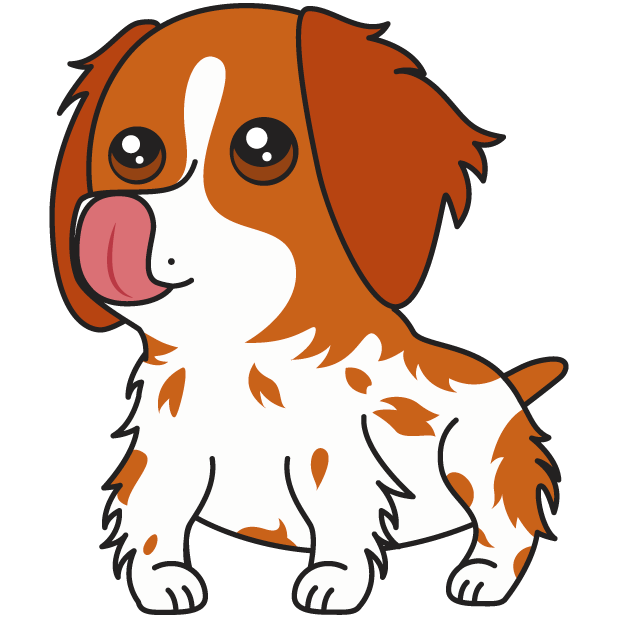 Honey the Brittany Spaniel messages sticker-5