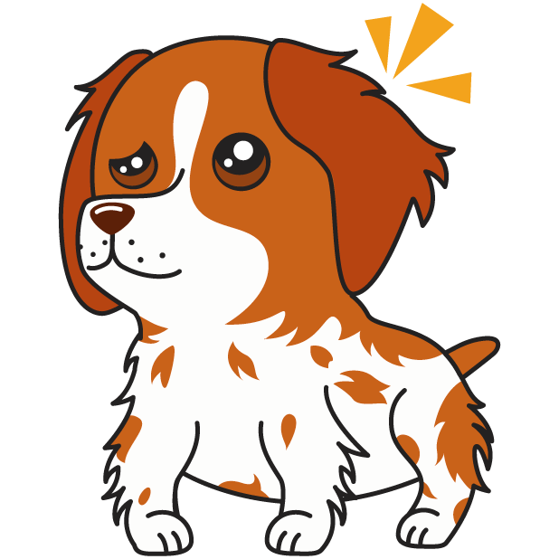 Honey the Brittany Spaniel messages sticker-11