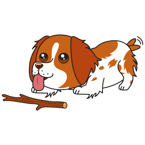 Honey the Brittany Spaniel messages sticker-7