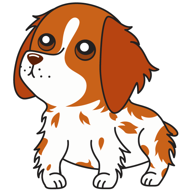 Honey the Brittany Spaniel messages sticker-10