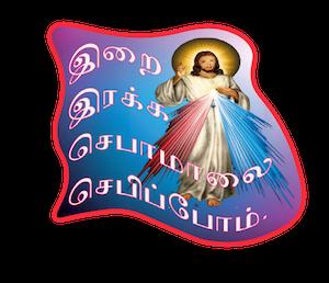 Missal Stickers messages sticker-10