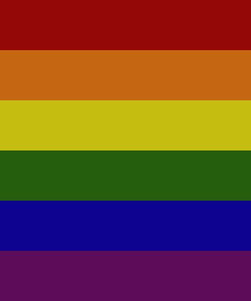 PrideNotPrejudice Solidarity Flags messages sticker-0