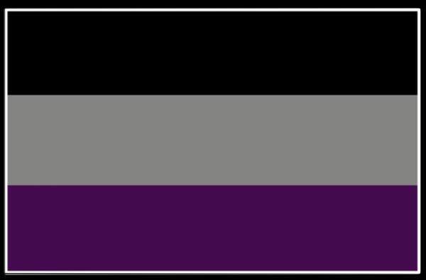 PrideNotPrejudice Solidarity Flags messages sticker-10