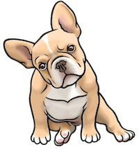 Bulldog Cute - Awesome Emoji And Stickers messages sticker-9