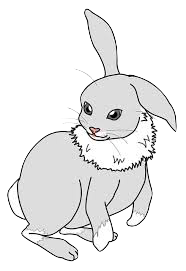 Hares Stickers messages sticker-2