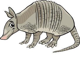 Armadillos Stickers messages sticker-2