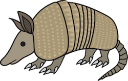 Armadillos Stickers messages sticker-1
