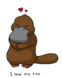 PlatypusCute - Platypus Emoji And Stickers Pack messages sticker-2