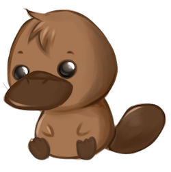 PlatypusCute - Platypus Emoji And Stickers Pack messages sticker-0