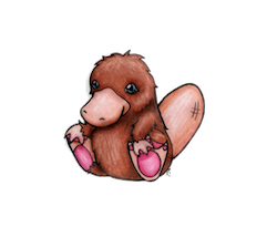 PlatypusCute - Platypus Emoji And Stickers Pack messages sticker-4
