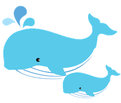WhalesCute - Whales Emoji And Stickers Pack messages sticker-8