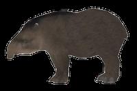 Tapirs Stickers messages sticker-8