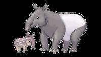 Tapirs Stickers messages sticker-1
