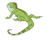 LizardMoji - Lizard Emoji And Stickers Pack messages sticker-3