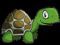 Turtles Stickers messages sticker-2