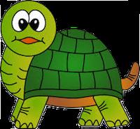 Turtles Stickers messages sticker-10