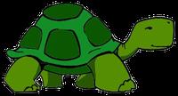 Turtles Stickers messages sticker-9