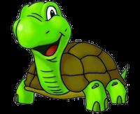 Turtles Stickers messages sticker-11
