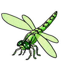 Dragonfly Stickers messages sticker-10