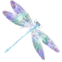 Dragonfly Stickers messages sticker-11