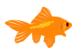 GoldFishMojis - GoldFish Emoji And Stickers messages sticker-3