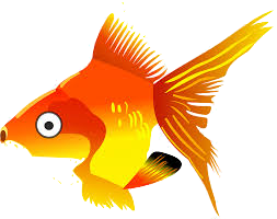 GoldFishMojis - GoldFish Emoji And Stickers messages sticker-7