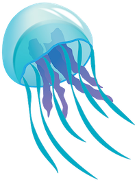 JellyFish Stickers messages sticker-2