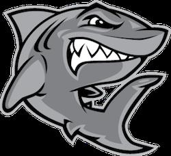 SharkMojis - Shark Emojis And Stickers messages sticker-8