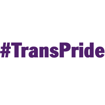 Trans Pride messages sticker-4
