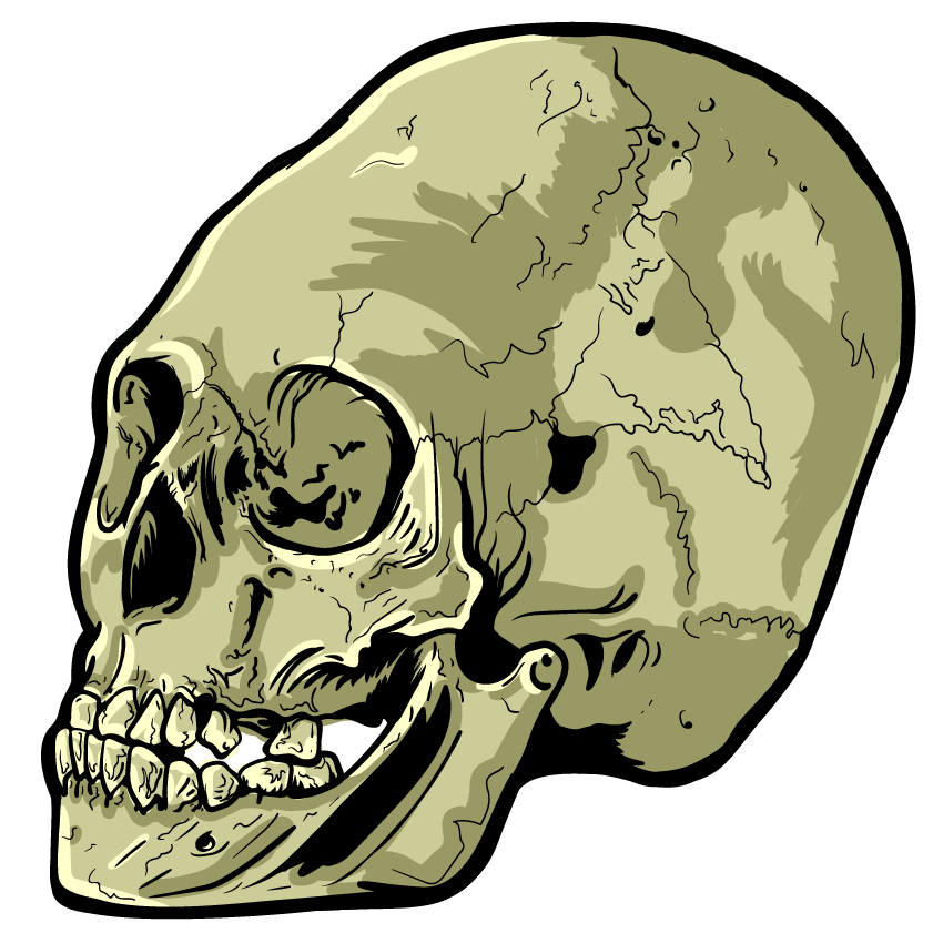 Skull Art Sticker Pack messages sticker-1
