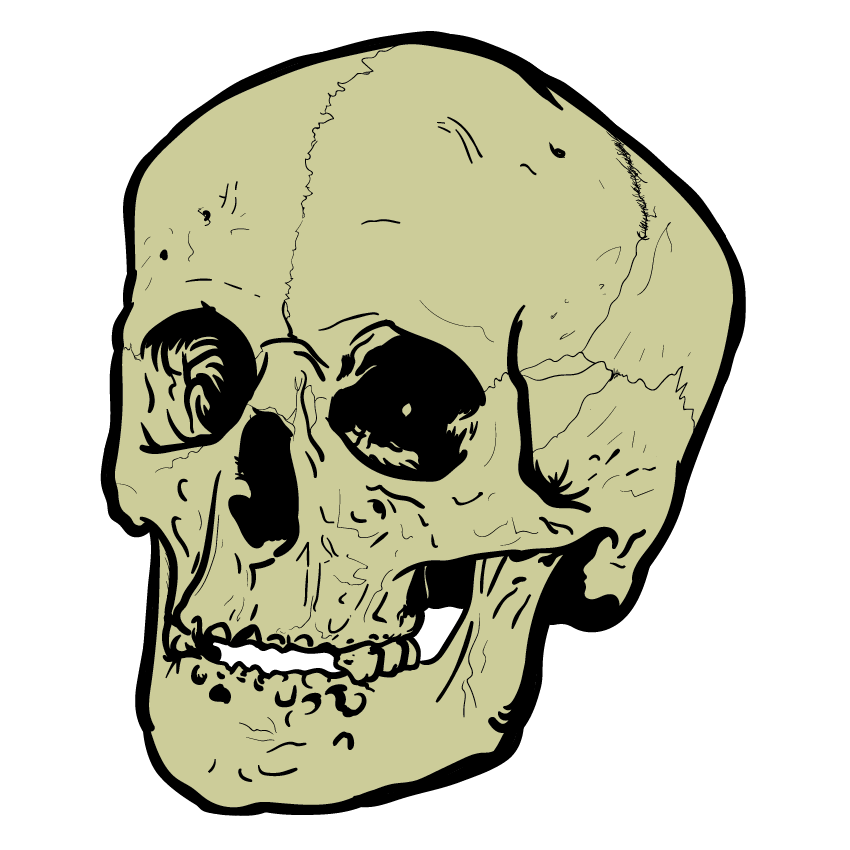 Skull Art Sticker Pack messages sticker-0